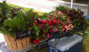 Chard, Radishes, and Beets