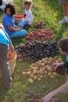 Farm pics 2012 074